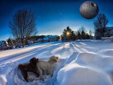 snowfall-03526-Edit-Edit