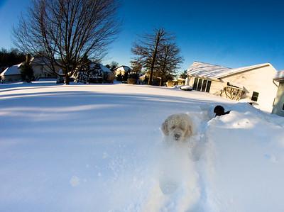 snowfall-03552