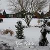 9  G My Snowy Front Yard From Door