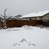 23  G Snowy Backyard