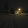Snowy Mornin'