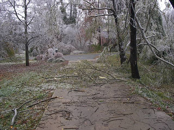 This was a substantial ice storm we got hit with one night in 2003