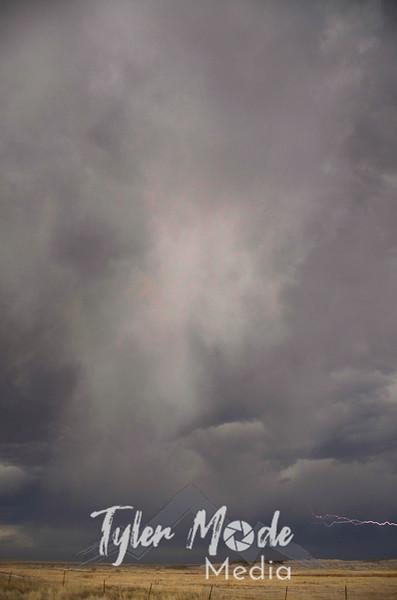 66  G SD Storm Lightning V
