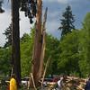 8  G Lightning Strike Tree Close V