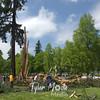 6  G Lightning Strike Tree