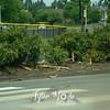 18  G Lightning Strike Tree Debris