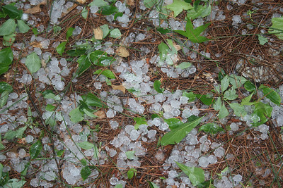 Close up of the hail.
