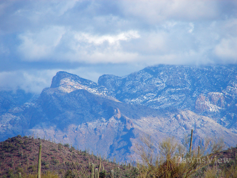 snow falls in the Mountains.  Tucson, AZ Dec 30, 2010