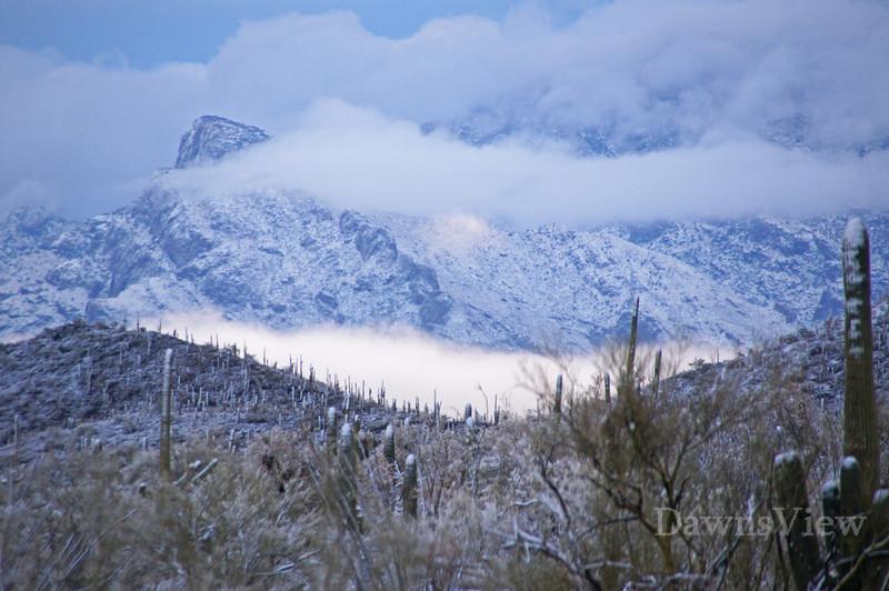 Snow in Tucson, Feb 27, 2011
