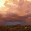 Monsoon hits, September 2009, Tucson, AZ