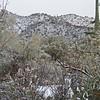 Snow in Tucson, AZ Feb 20, 2013