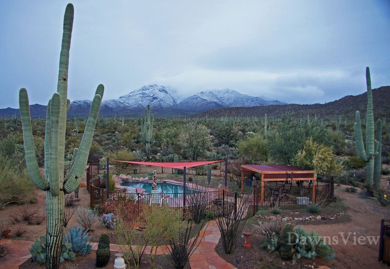 FEB 11, 2013 Snow in Tucson, AZ