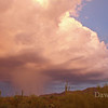 Monsoon hits, September 2009, Tucson, AZ