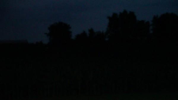Lightning bug and cricket sounds.