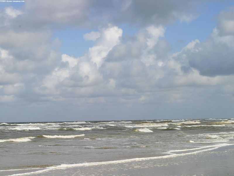 Beach near Schoorl, july 2004