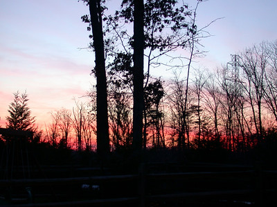 Sunset: Leesburg, Va: December 29, 2002