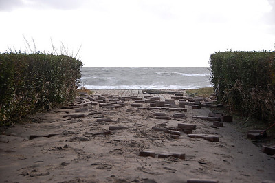 I think the bricks along the seawall got scared...and they evacuated!