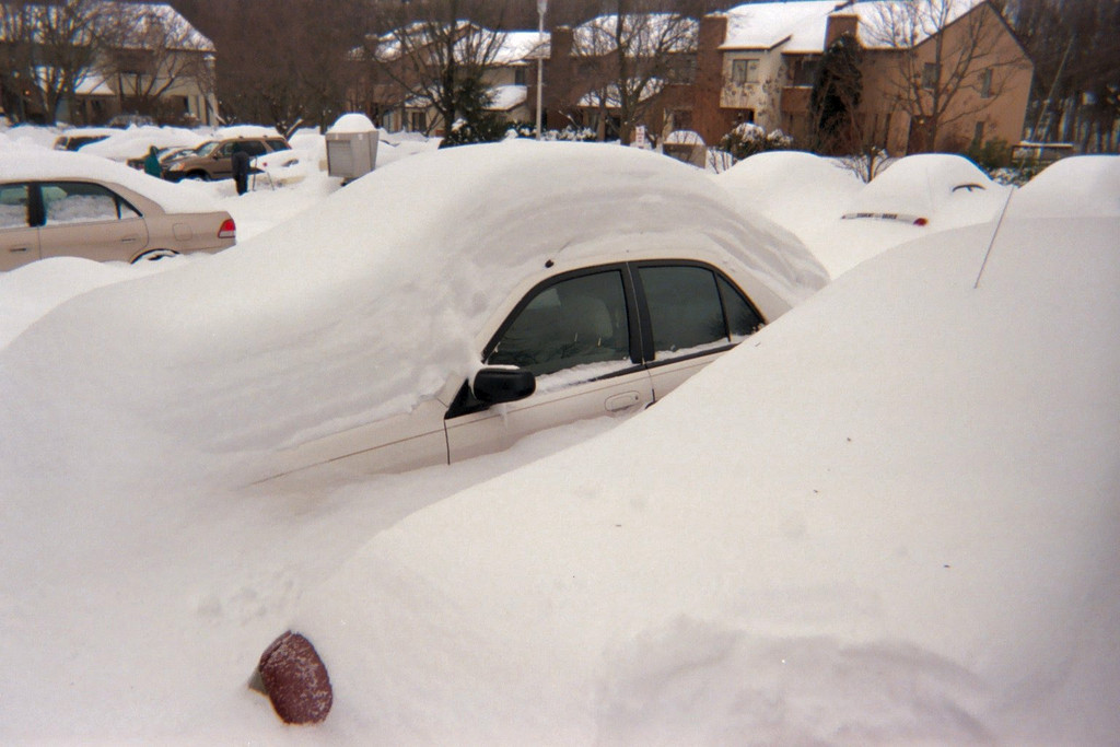 Our red Toyota and white Mazda are buried under huge mounds of snow. Between the cars the snow is up to the door handles.
