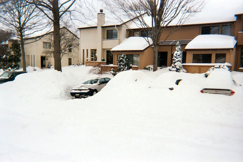 Houses across the street. One car had been dug out so far, leaving mountains of snow on either side. Like the rest of us, this neighbor later put a lawn chair in the middle of his hard-won space whenever he left to indicate that it should not be taken by anyone else. Everyone respected the territorial markings.