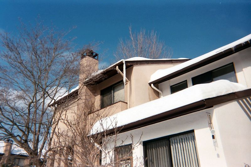 The snow melted in the bright sunshine after the storm but the gutters were still blocked by ice dams. The overflowing water created long icicles that hung from the roof at the corners of our house.