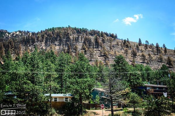 The Burn - Waldo Canyon Fire - 2012