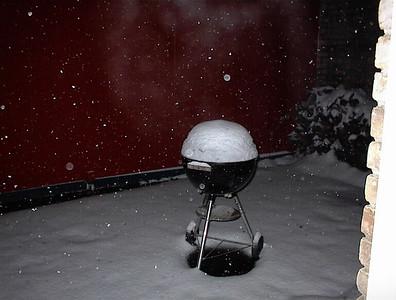 The Great Brazosport Snow 2004
