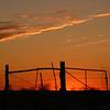 The Orange Glow of the Sunset