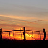 Another Golden Sunset.
