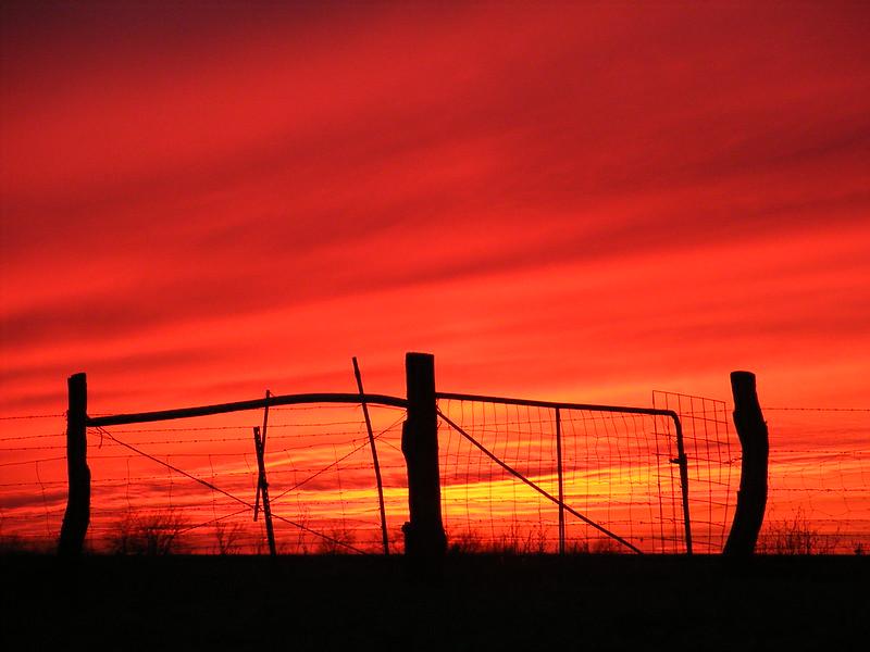 Red at Night ----