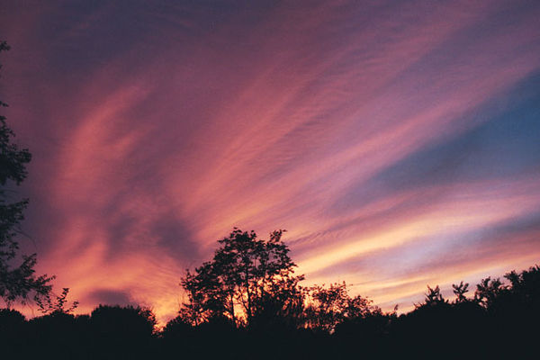 "A recent sunset at home. Scanned from a 35mm negative.<br /> I like the ""swept"" look that the clouds have."