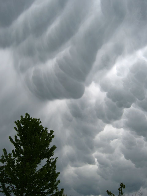 Mammatus clouds during a very stormy day. This storm produced a tornado north of us.