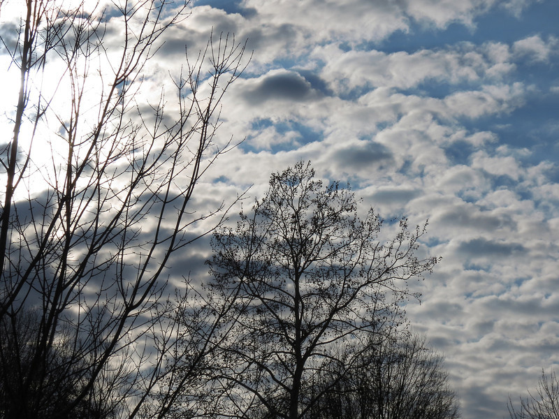 The sky and clouds on January 8, 2013 -- doesn't look like January to me.