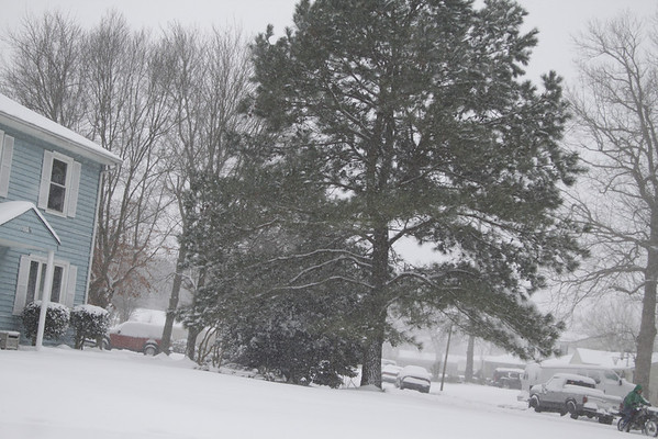 Windsor Oaks   - Mount Trashmore area.