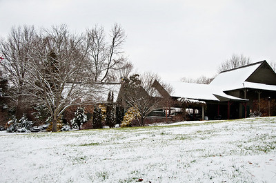 Back yard with clinging snow