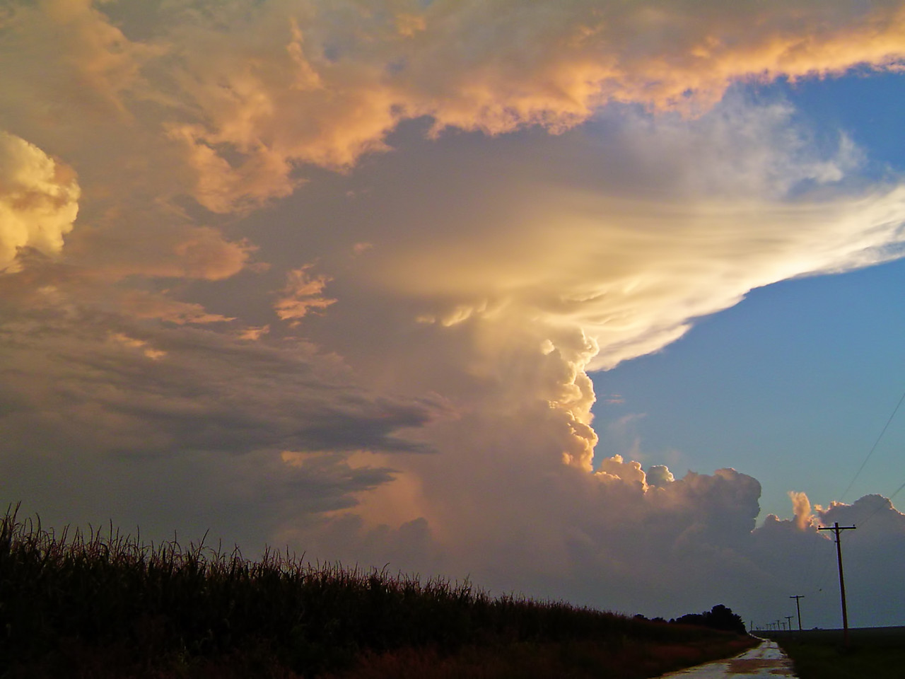 August 9 - NW Macon County IL (new storm, severe warned)