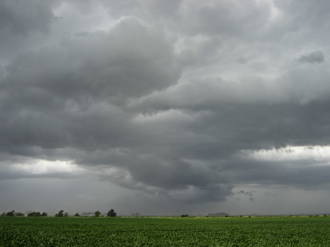 "June 8 - W Macon County IL. This was a line of severe thunderstorms with strong straight line winds and my first up close experience with leading edge gustnadoes.<br /> <br /> Related link <a href=""http://www.crh.noaa.gov/ilx/events/jun082005/jun08.php"">http://www.crh.noaa.gov/ilx/events/jun082005/jun08.php</a>"