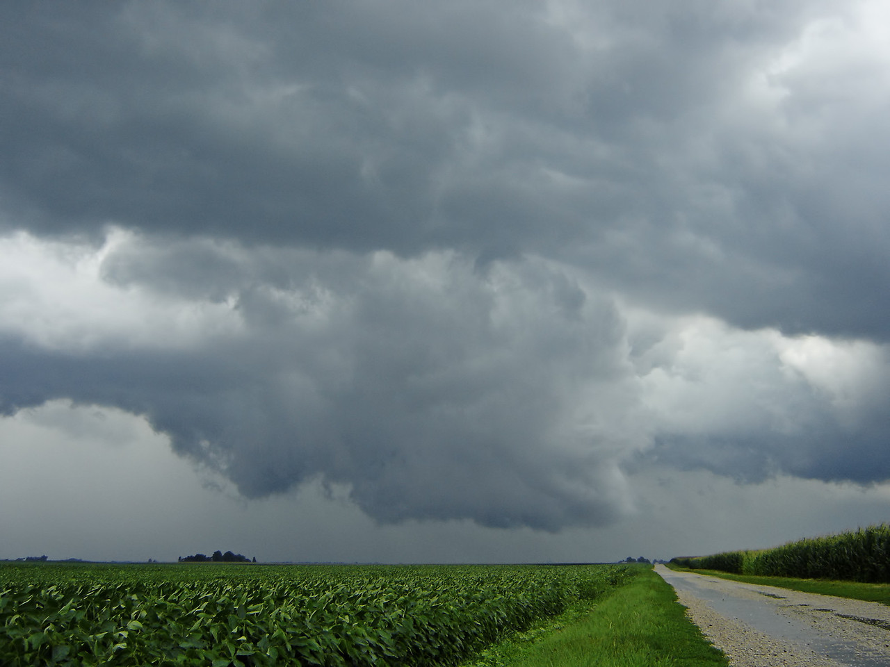 July 26 - N Macon County IL (tornado warned)