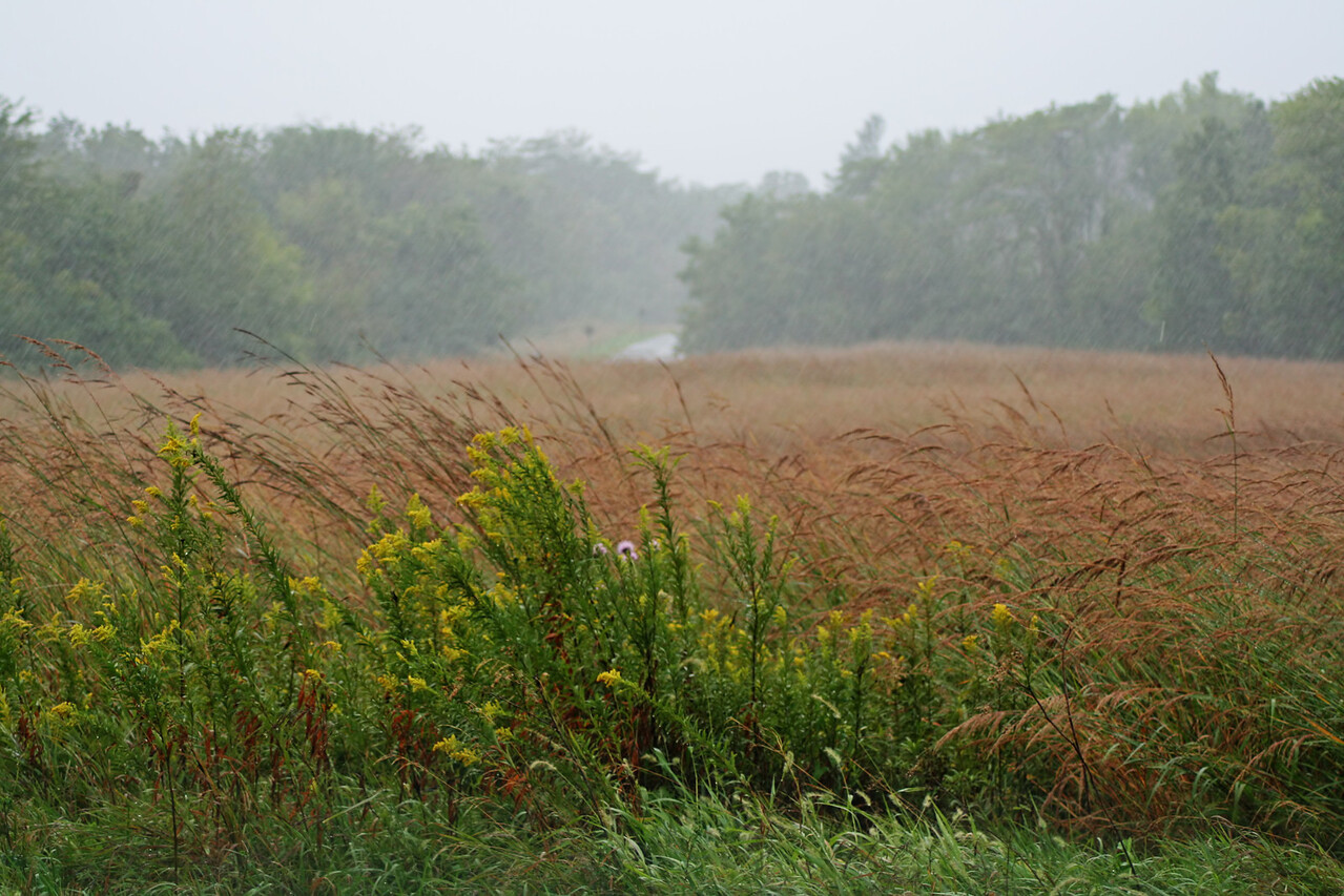 September 14 - Heavy rain from the remnants of Hurricane Ike