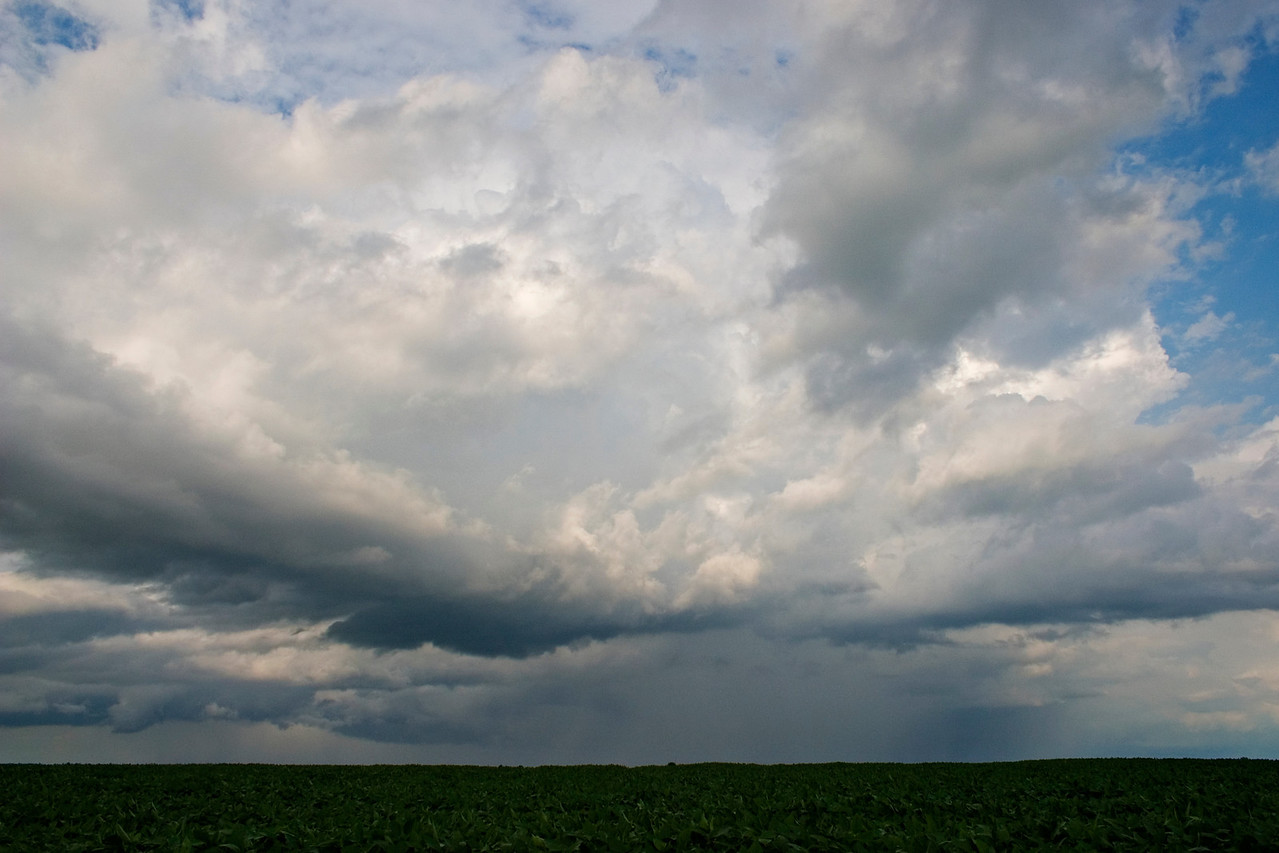 July 21 - Coles County Illinois