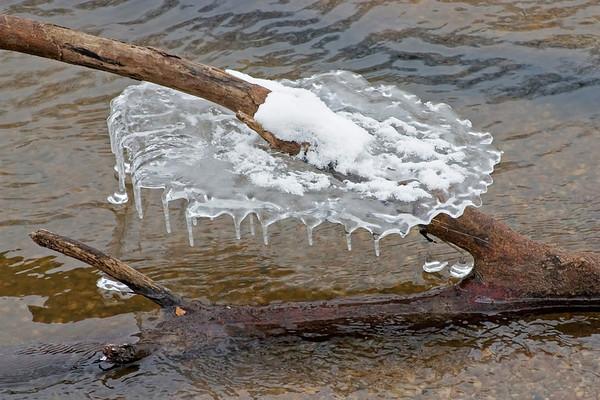 January 12 - Sangamon River, Macon County Illinois