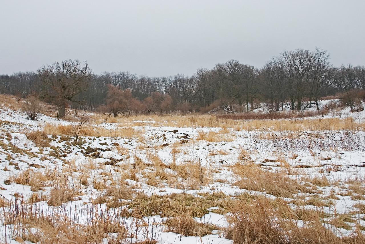 January 16 - Weldon Springs, Clinton Illinois