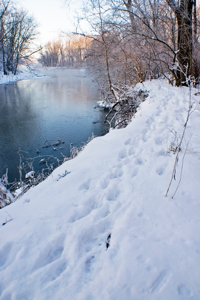 January 10 - Lincoln Trail Homestead Park, Macon County Illinois