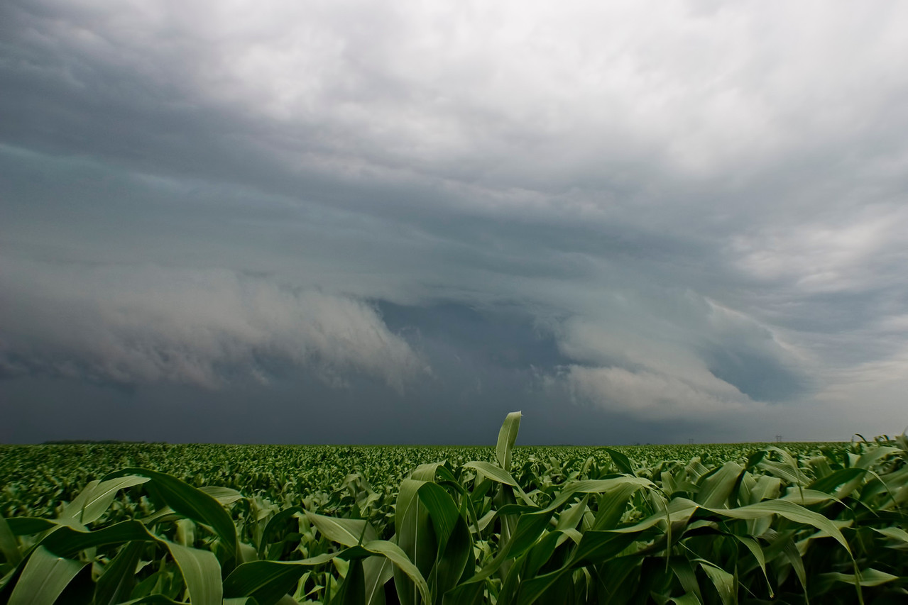 June 13 - Macon County Illinois