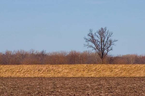 March 12 - Macon County IL