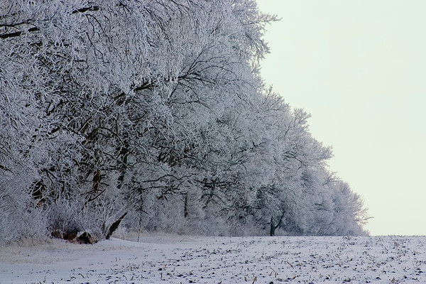 January 13 - Macon County IL