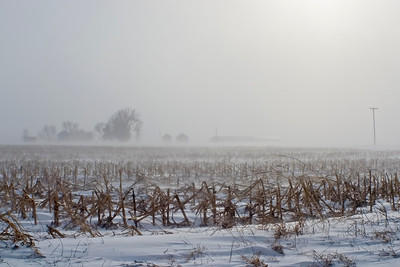 January 12 - Near Blizzard Conditions, Macon County Illinois