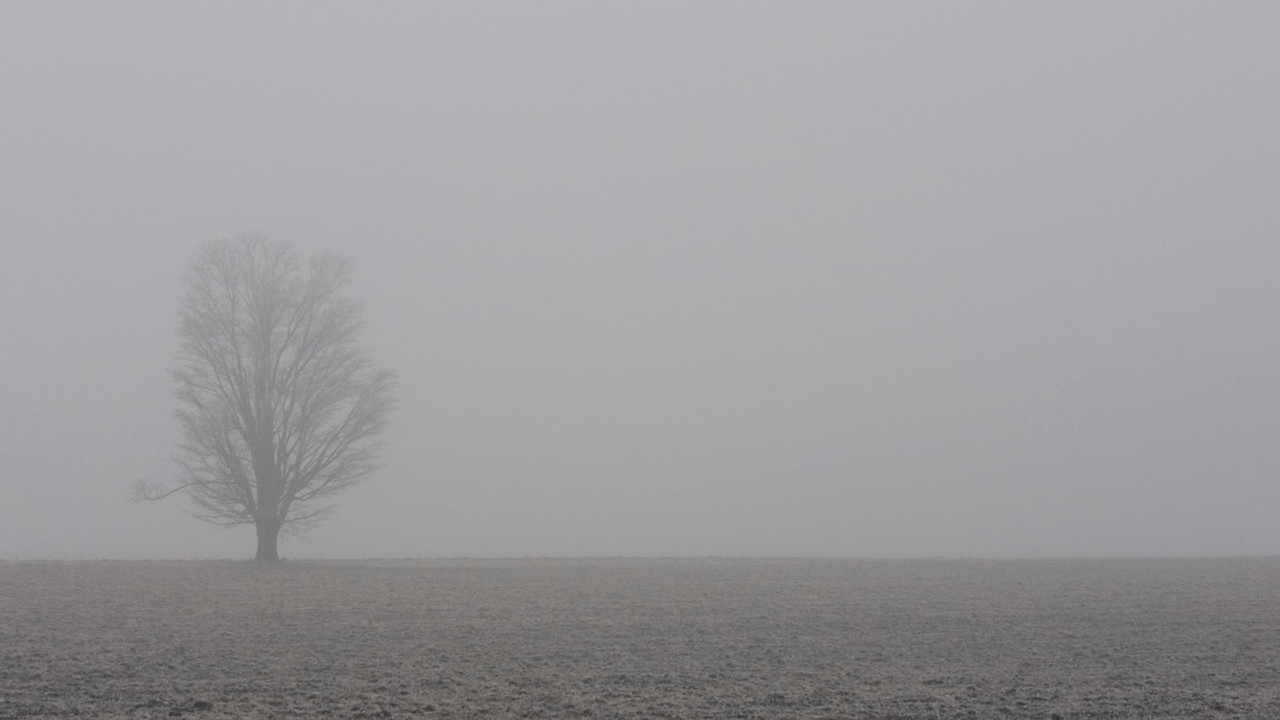 February 7 - Freezing Fog, Macon County Illinois