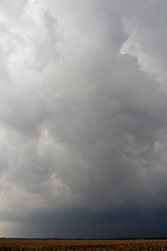 March 2 - Severe Thunderstorm, Marion County Illinois
