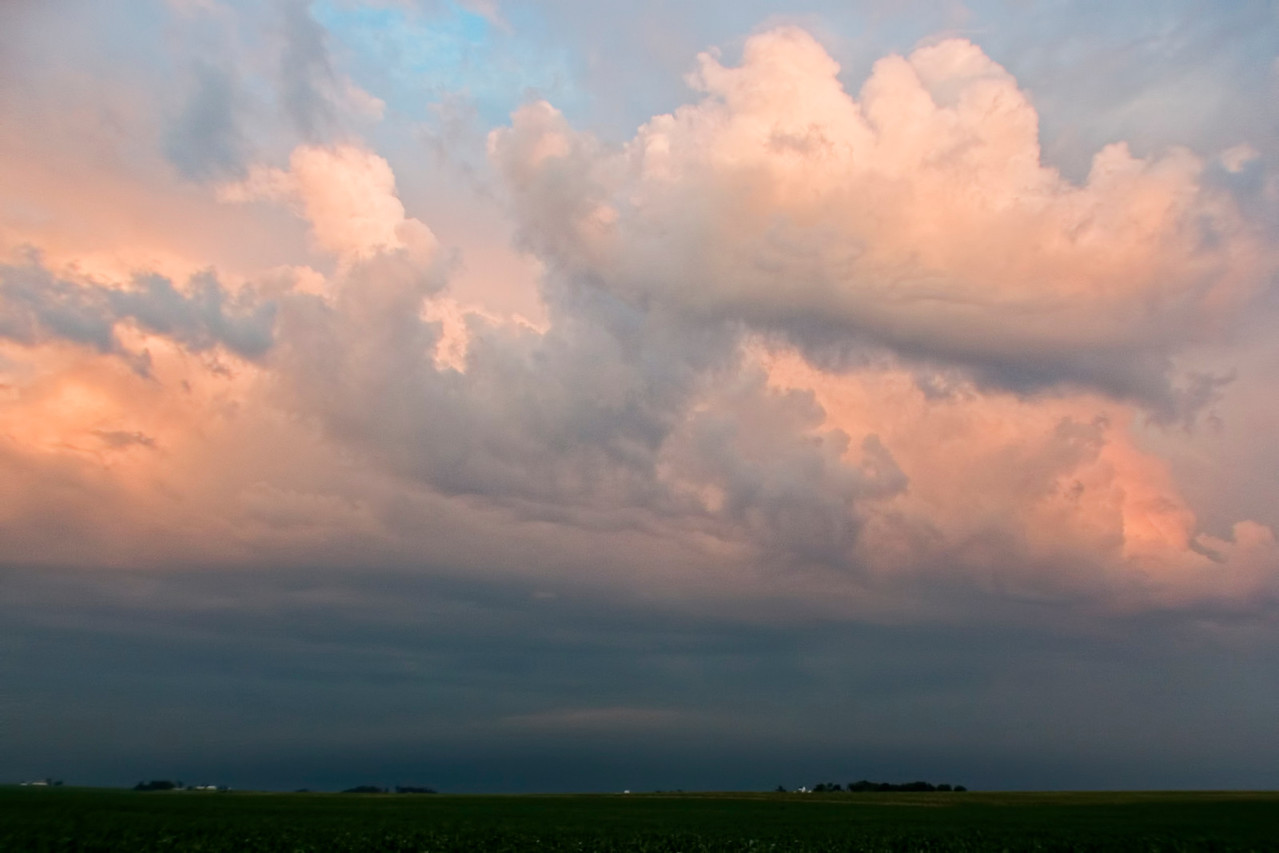 August 9 - Severe Thunderstorm Aftermath, Champaign County Illinois