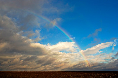January 30 - Morning rainbow out ahead of chilly showers, Macon County IL